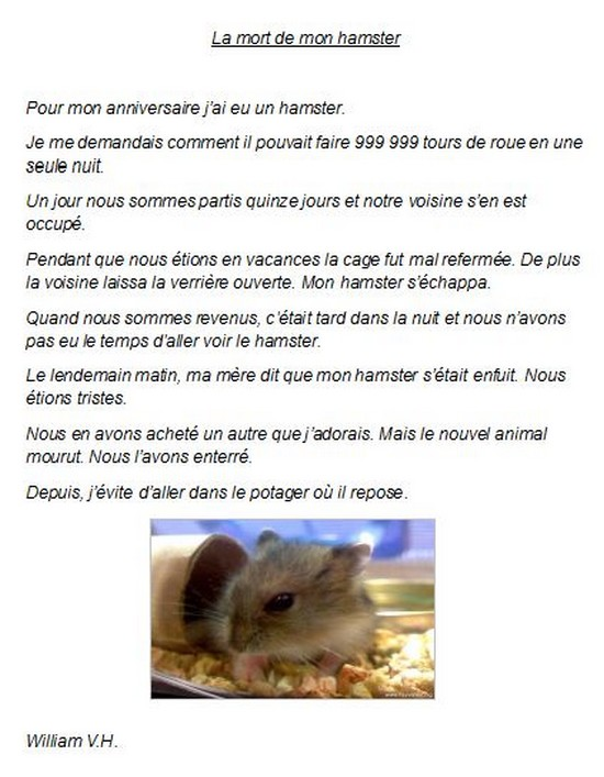 Mon hamster-William VH