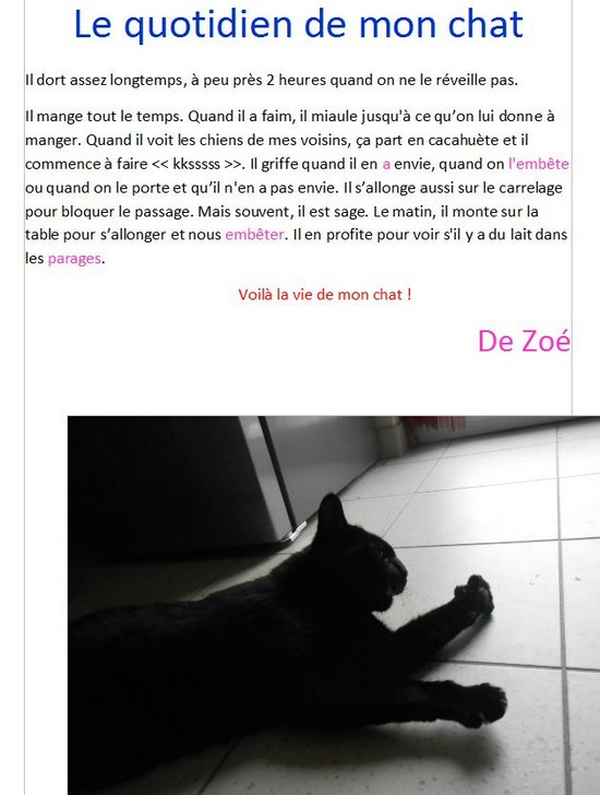 Mon chat Heliosse (2)-Zoe G