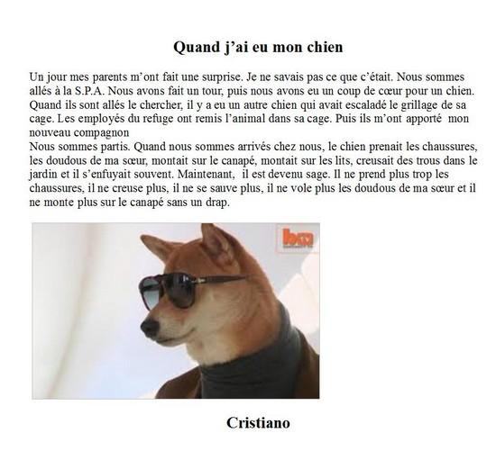 Mon chien-Cristiano E