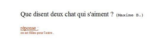 Devinette-Maxime B